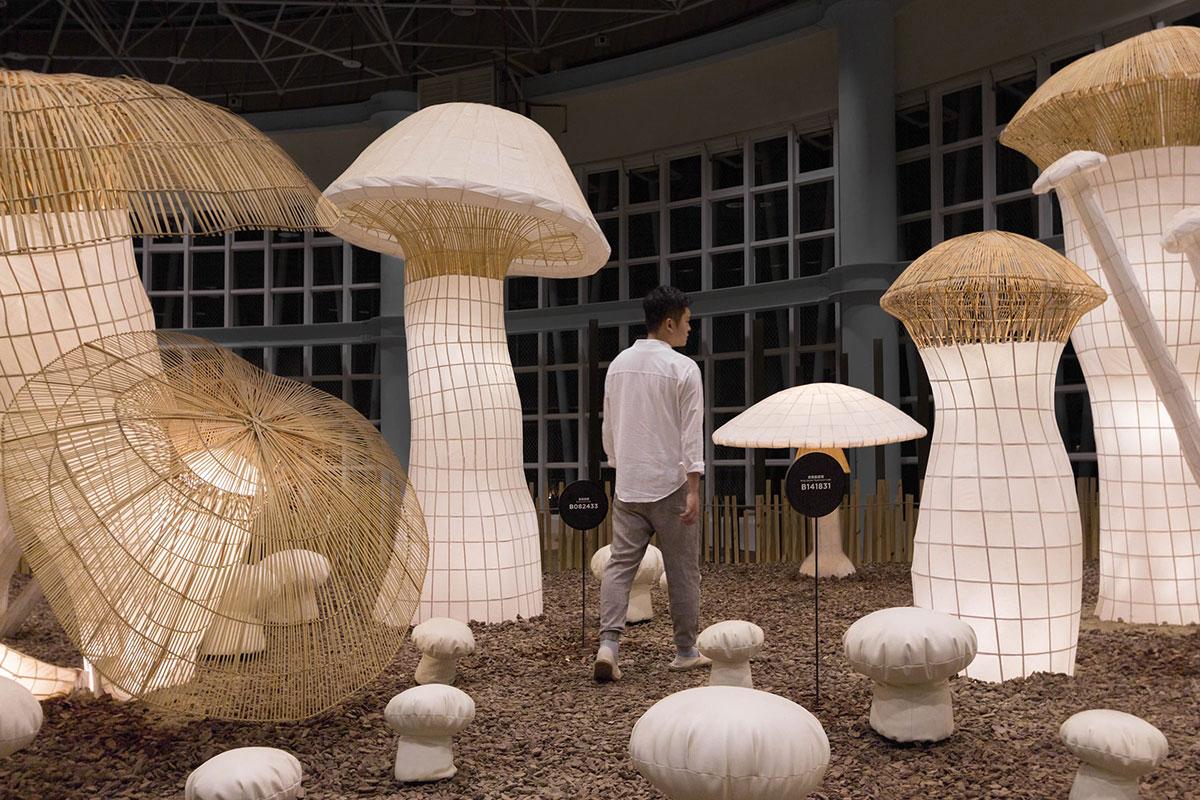 这届博览会展览设计里,这片竹编工艺织就的百菇森林大放光彩