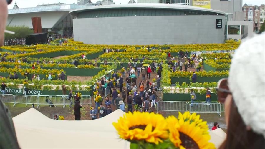 12.5万多向日葵打造的迷宫,这个开业庆典活动亮了视线