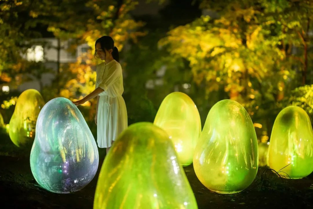 橡子森林被展览活动刷成光之艺术空间,57种液化光色真美