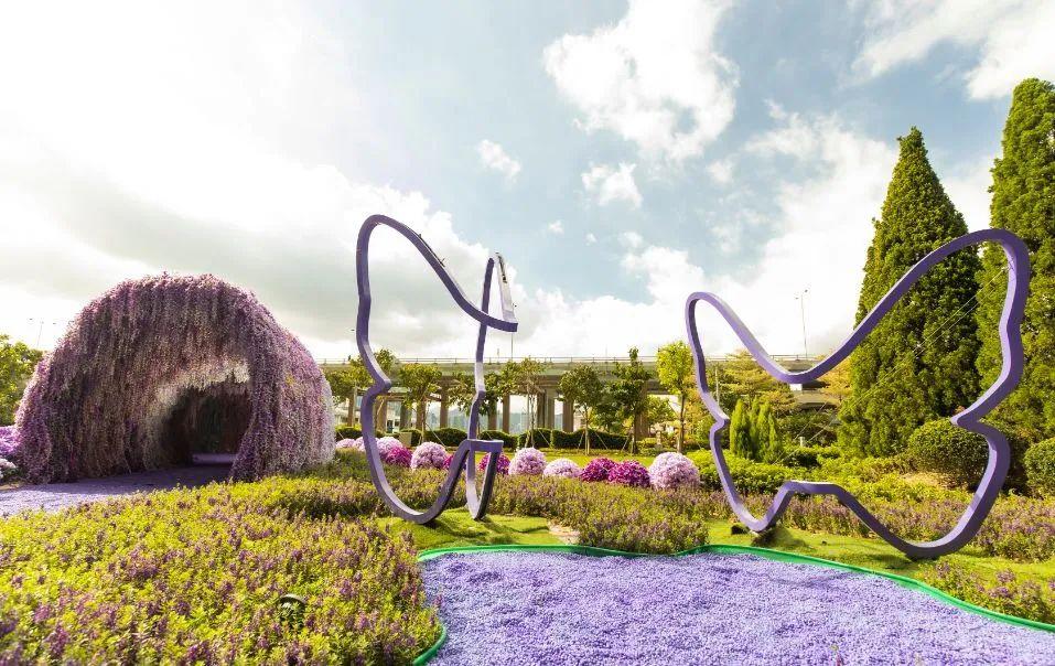 樱花主题展览活动策划的紫色花海把北角海渲染成紫色梦幻国度