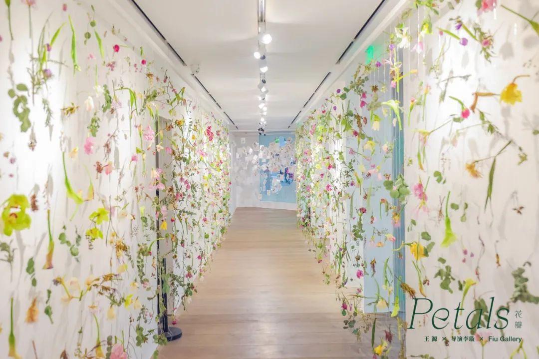 限时12天的花瓣主题展览活动策划悄然开启,掀起朋友圈新热潮